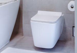 Dusch WC Test, Übersicht, Vergleich und Bewertung